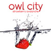"Owl City  ""Strawberry Avalanche"""