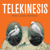 TELEKINESIS 『PARALLEL SEISMIC CONSPIRACIES』